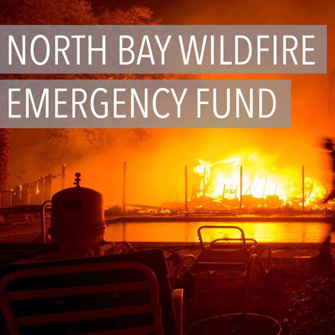 North Bay CA Wild Fire Find